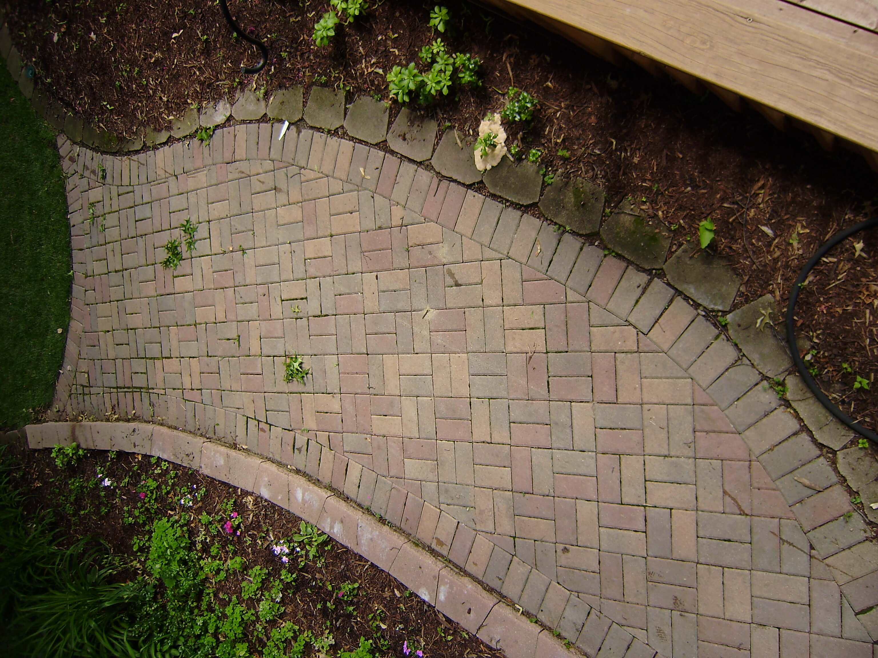 Paver patio walkway that contains algae dirt and other debris