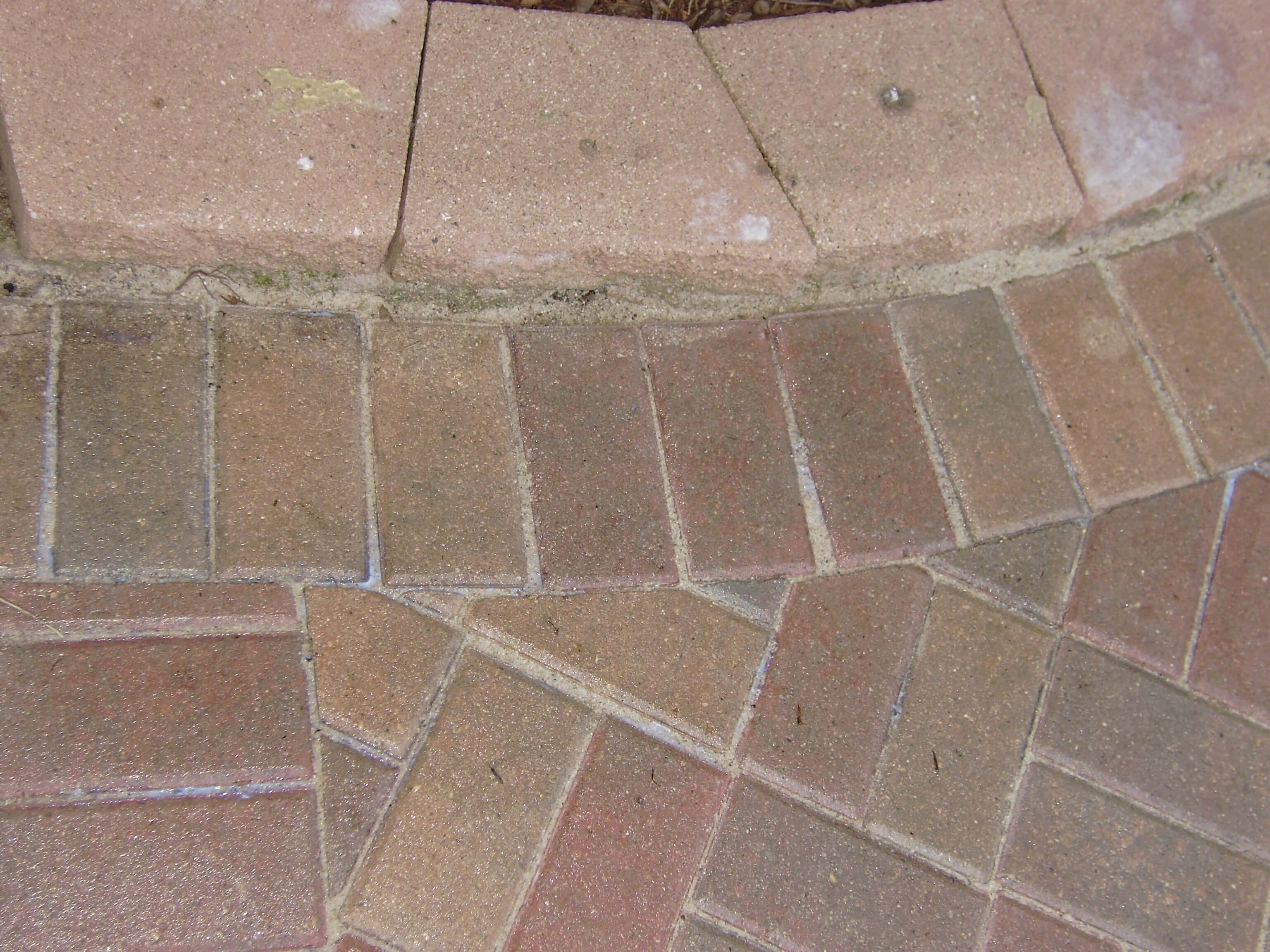 Patio paver walkway that has recently been sanded